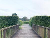 castrop-rauxel+landschaftsarchaeologischer-park-burg-henrichenburg+bild02.jpg