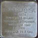 castrop-rauxel+stolperstein-helmut-blumenthal+bild01.jpg