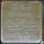 castrop-rauxel+stolperstein-siegfried-blumenthal+bild01.jpg