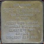 castrop-rauxel+stolperstein-sofie-blumenthal+bild01.jpg