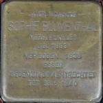 castrop-rauxel+stolperstein-sophie-blumenthal+bild01.jpg