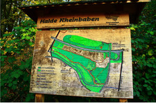 gladbeck+halde-rheinbaben+bild01.jpg