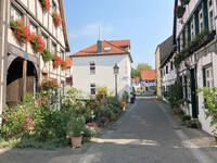 herten+in-der-freiheit-westerholt+bild03.jpg
