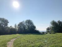 oer-erkenschwick+halde-ewald-fortsetzung+bild02.jpg